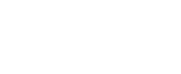 THE APO logo